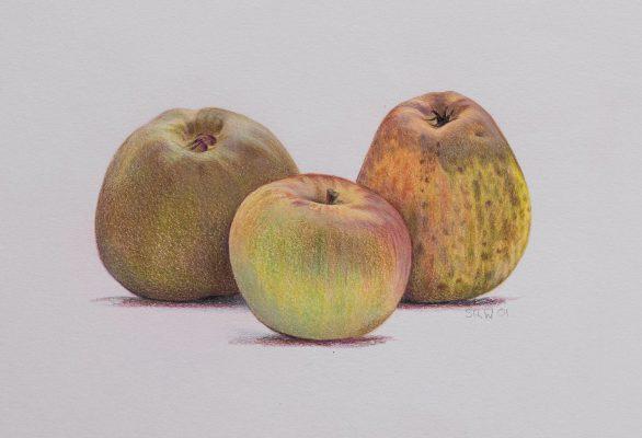 3 green apples