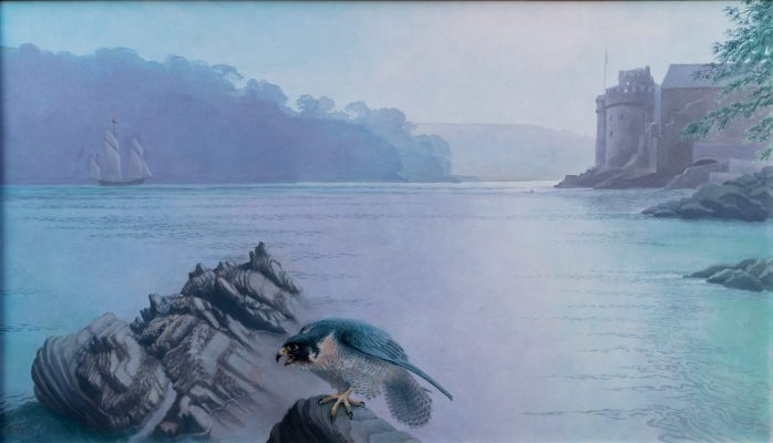 Coastal scene of the river mouth with castle and peregrine